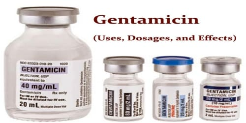 Gentamicin (Uses, Dosages, and Effects)