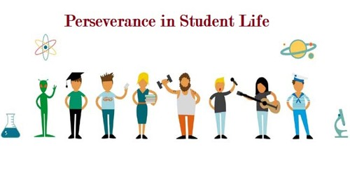 Perseverance in Student Life